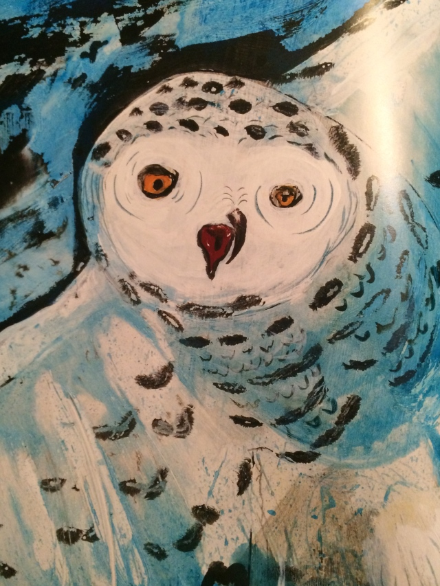 The beautiful Snowy Owl