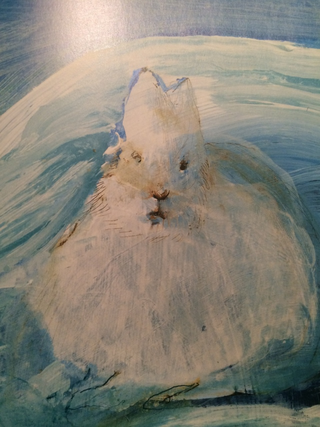 The Arctic Hare, with its winter coat