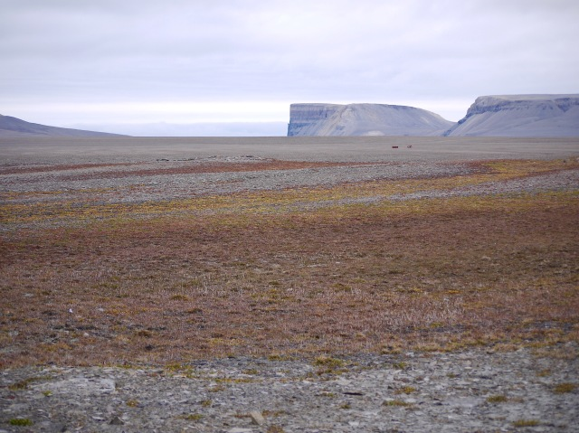 Arctic tundra, ,with rusted oil barrel decorations