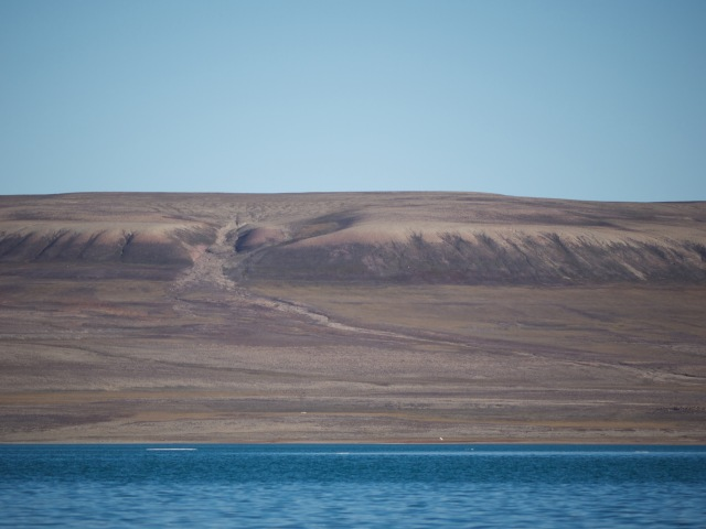 The small white dot is a polar bear, visible from at least a mile away.